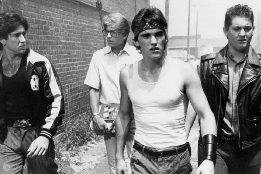 ماهی جنگی (1983) Rumble Fish